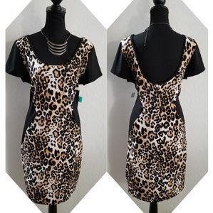 🆕 Janette Plus Dress Plus Size 2XL